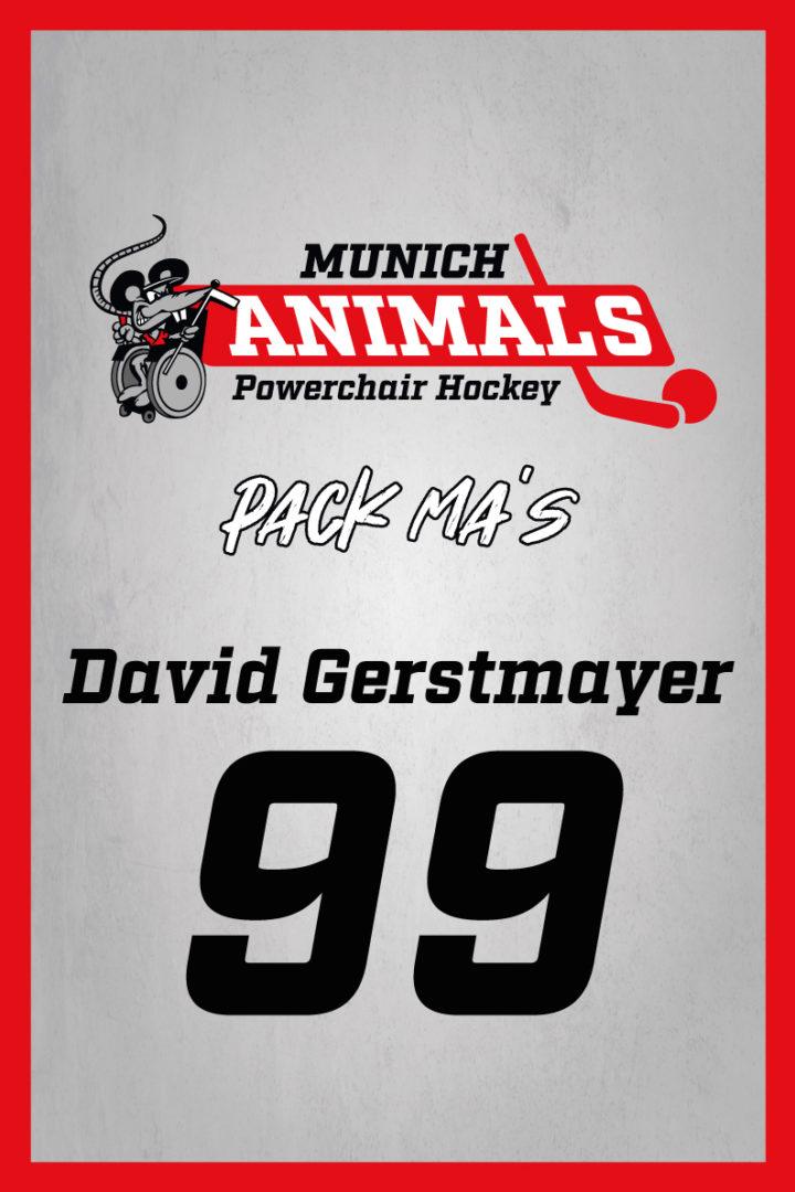 David Gerstmayer
